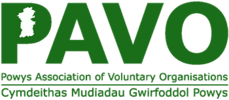 Current Opportunities are Advertised at PAVO